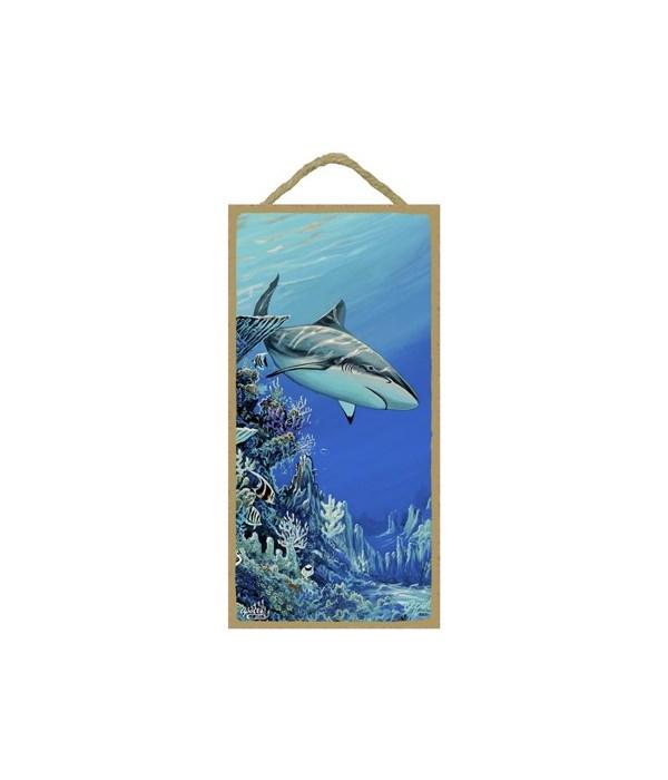 Apollo - (no IMPRINT) Shark swimming in