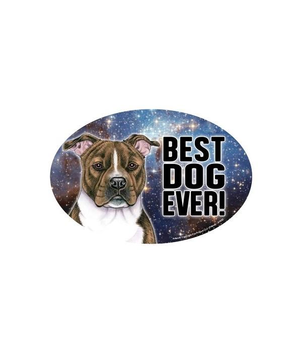 Pitbull (brindle) (Best Dog Ever!) Oval