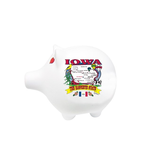 Iowa Bank Pig State Map