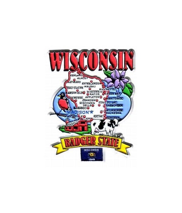 WI Magnet 2D State Map