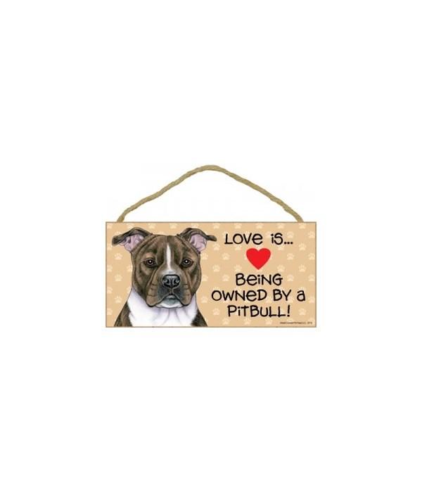 Pitbull (Brindle) Love Is.. 5x10 plaque