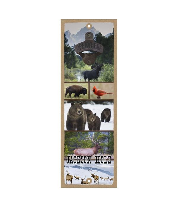 Jackson Hole - Collage of local animals