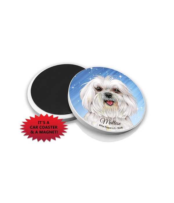 Maltese (puppy cut) car coaster /Magnet