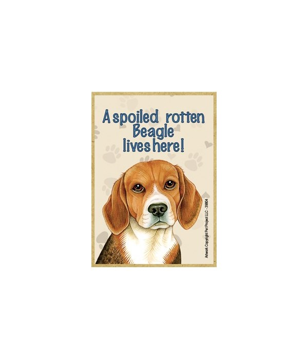 A spoiled rotten Beagle lives here! Magn