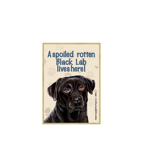 A spoiled rotten Black Lab lives here! M
