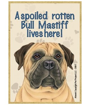 A spoiled rotten Bull Mastiff lives here