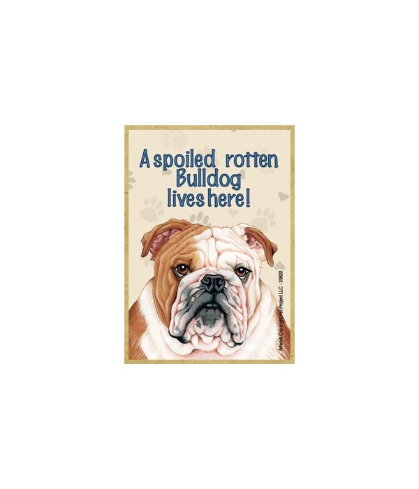 A spoiled rotten Bulldog lives here! Mag