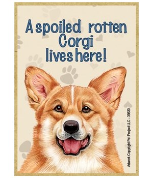 A spoiled rotten Corgi lives here! Magne