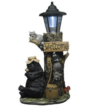"Bear w/solar lantern 18"""