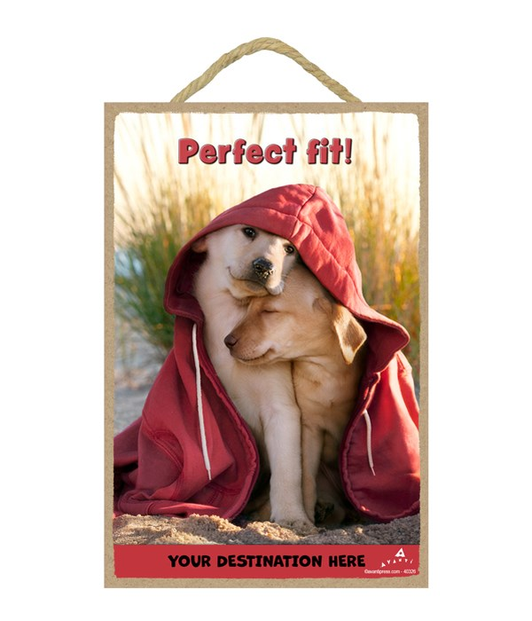 Dogs in Hoodie on Beach - Perfect fit! 7x10.5 Sign