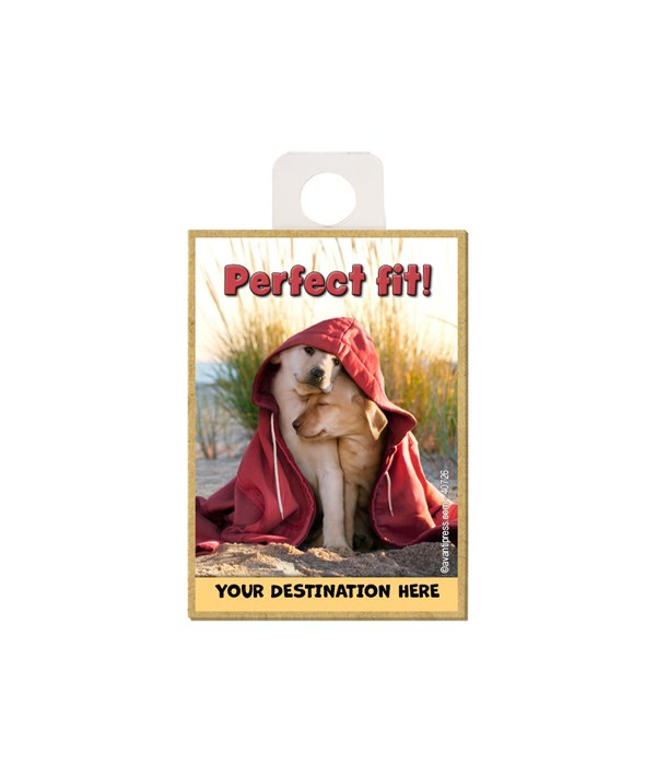 Dogs in Hoodie on Beach - Perfect fit! Magnet