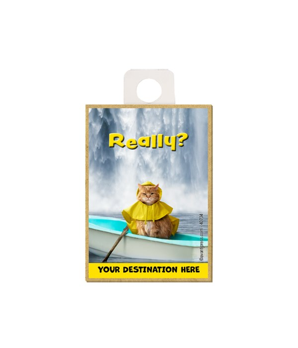 """Cat wearing a raincoat sitting in a row boat in front of a waterfall - """"Really?"""" Magnet"""