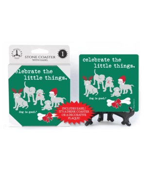 Celebrate the little things (5 dogs and