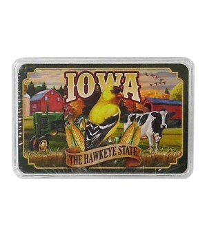 Iowa Playing Cards Mural