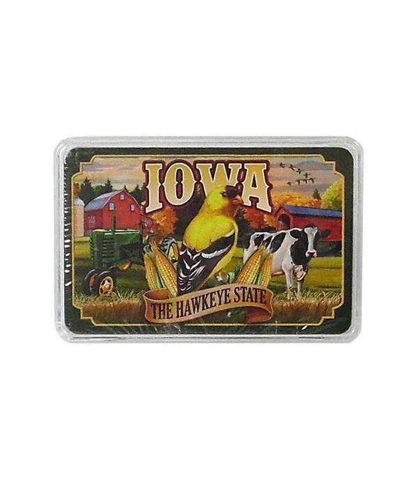 Iowa Playing Cards Mural