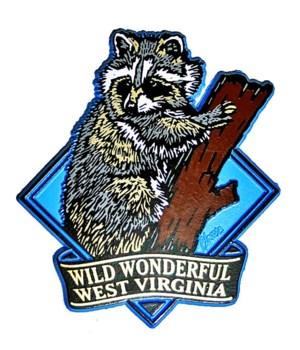 *WV Raccoon diamond magnet