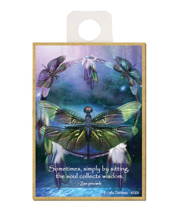 Dragonfly  Sometimes, simply by sitting, the soul collects wisdom.  Zen proverb Wood magnet
