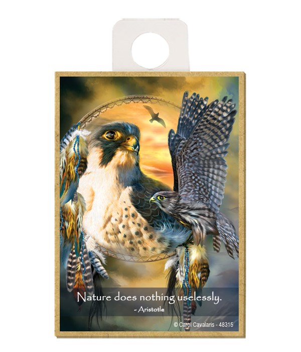 Falcon  Nature does nothing uselessly.  Aristotle Wood magnet