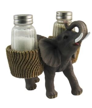 "L6"" Savanna Season (Elephant S/P) 12PC"