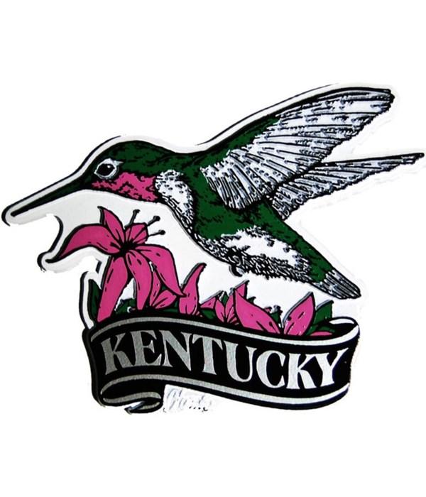 Kentucky Hummingbird banner magnet
