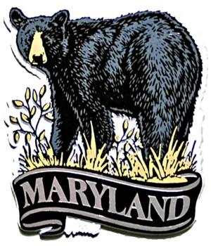 Maryland bear banner magnet