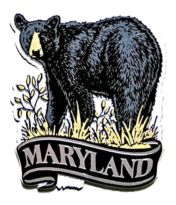 *Maryland bear banner magnet