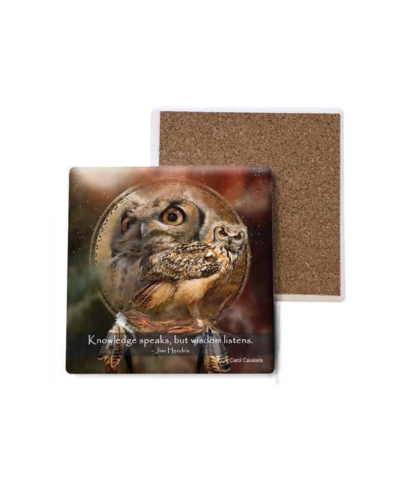 Owl  Owl Shield Bulk Coaster