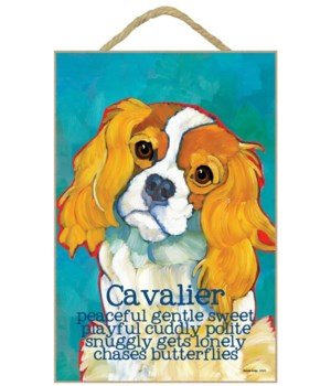 Cavalier (red & white) 7x10 Ursula Dodge