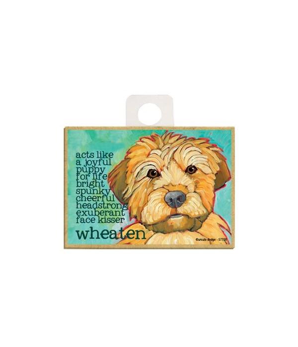 Wheaten Terrier Magnet