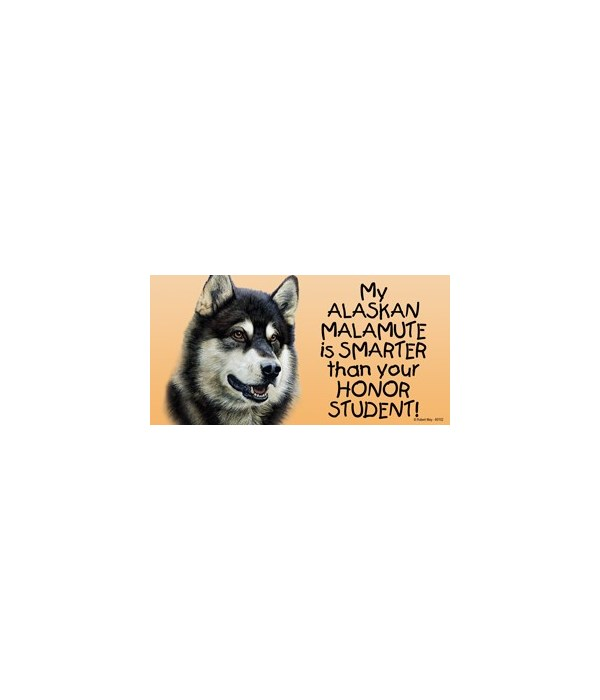 My Alaskan Malamute is smarter than your
