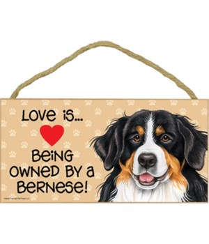Bernese Love Is 5x10 Plaque