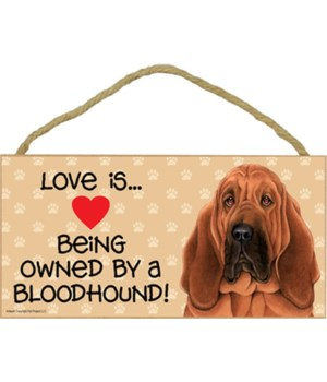 Bloodhound Love Is 5x10 Plaque