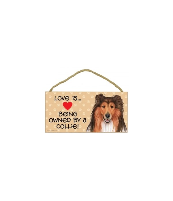 Love is being owned by a Collie 5x10 Sign