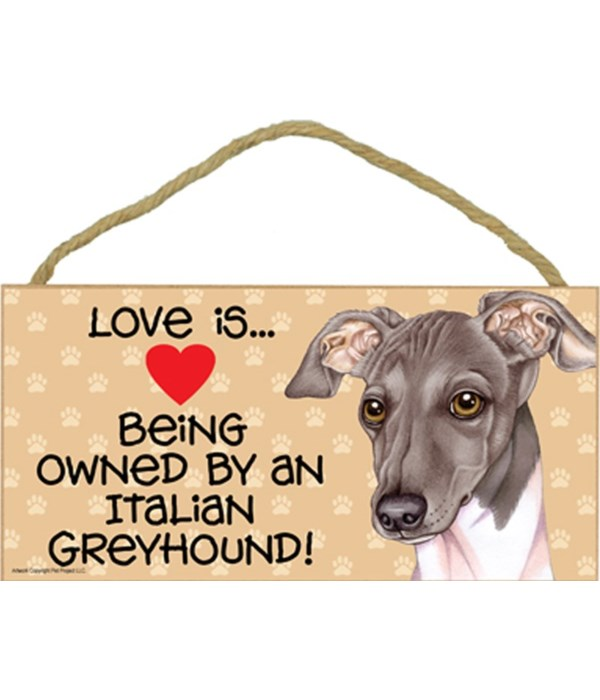 Love is being owned by an Italian Greyhound (grey and white color) 5x10 Sign