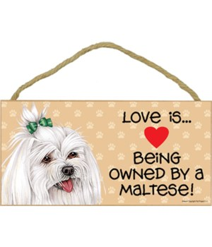 Maltese w/ bow Love Is.. 5x10 plaque