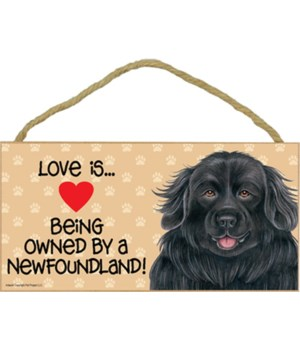 Newfoundland Love Is 5x10 Plaque