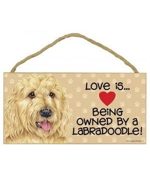 Labradoodle Love Is.. 5x10 plaque