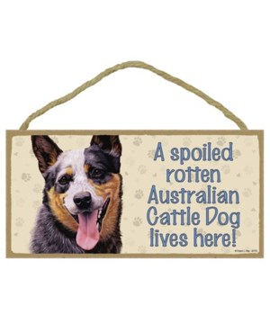 Australian Cattle Dog Spoiled 5x10