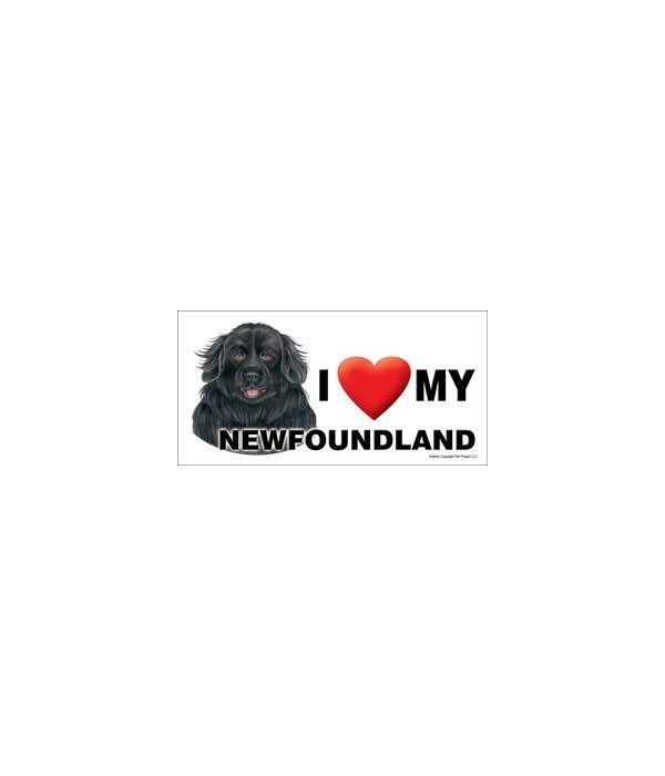 I (heart) my Newfoundland 4x8 Car Magnet