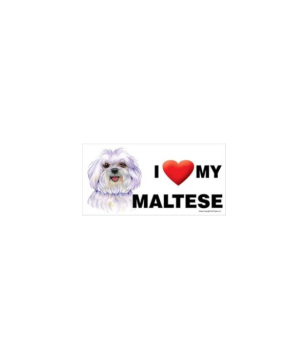 I (heart) my Maltese (puppy cut / short