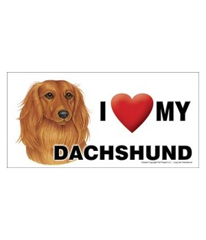 I (heart) my Dachshund (Long hair) 4x8 C