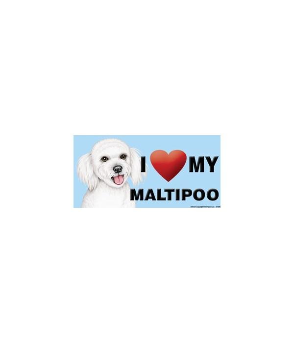 I (heart) my Maltipoo 4x8 Car Magnet