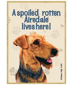A spoiled rotten Airedale lives here! Ma