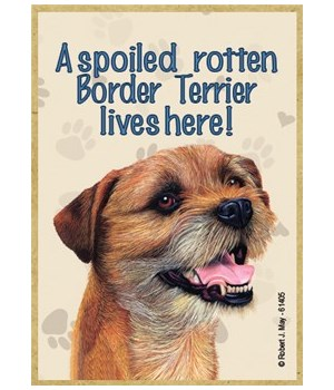 A spoiled rotten Border Terrier lives he