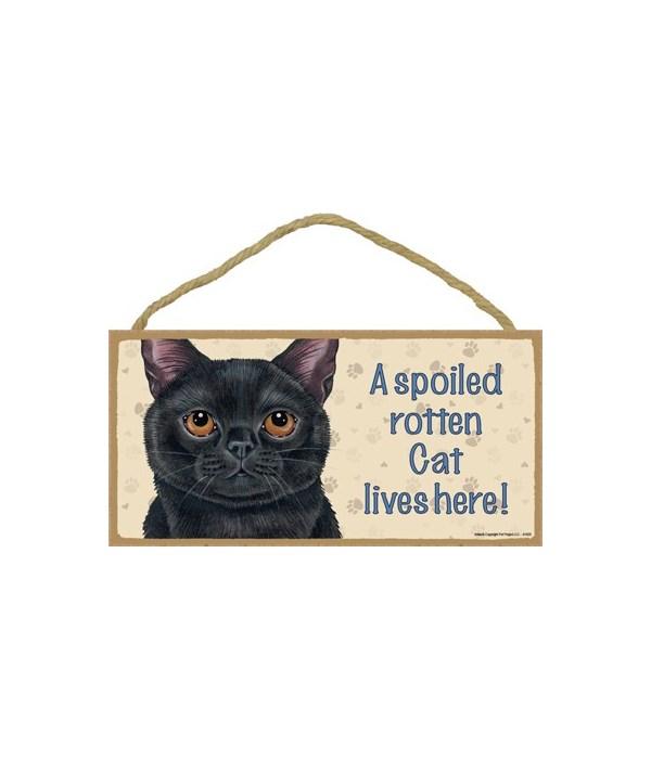 Cat lives here! (Black Cat) 5x10