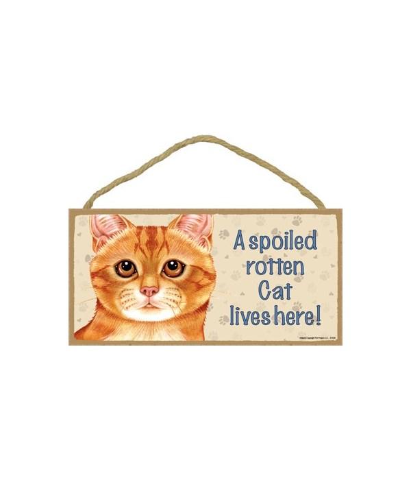 Cat lives here! (Orange Tabby) 5x10