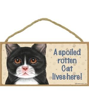 Cat lives here! (Tuxedo – more Black) 5x
