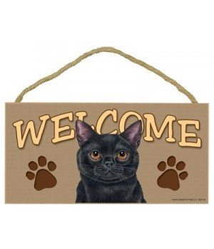 Welcome Black Cat 5x10