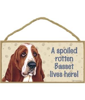 Basset (Hound) Spoiled 5x10