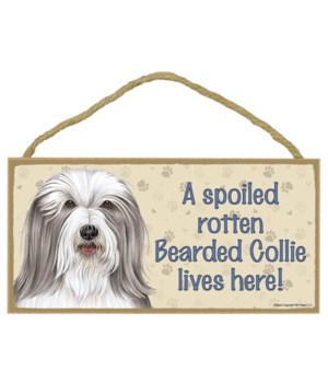 Bearded Collie Spoiled 5x10